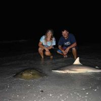 shark_fishing_tampa